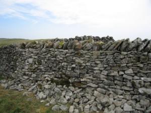 wall205